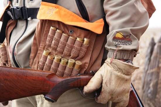 Upland Hunting Requires A Few Basic Items To Get Started