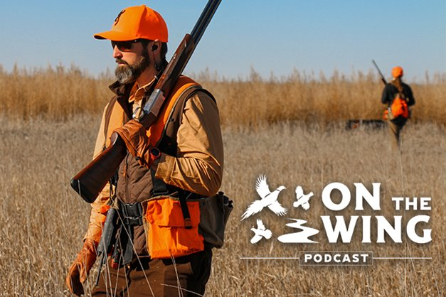 9b07531884ae5 Choosing a Compatible Bird Dog Breed for Pheasant & Quail Hunting