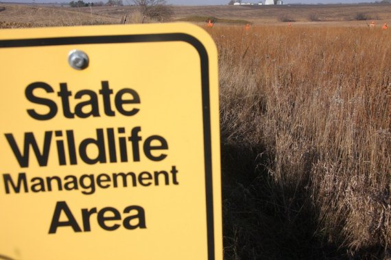 State wildlife areas are prized by upland conservationists for their permanently conserved habitat and public access.