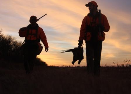Whether hunting as an individual or as a family, the tradition of pheasant hunting is an exciting experience