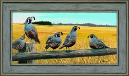 Framed Canvas On The Fence by Larry Deacon