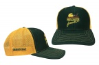 PF Wisconsin Football Cap-Green/Gold- Meshback
