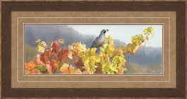 Framed Vineyard Quail by Susan Boudet