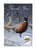 Pheasants Forever Thank You Cards 10/set 2/envelopes